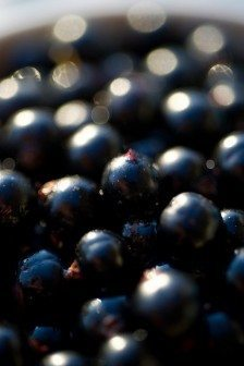 Black-currant-benefits