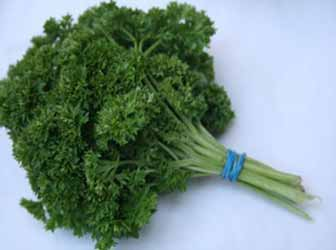 Juicing Parsley
