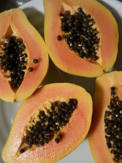 Eat-papaya