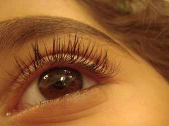 Triphala Eyebath