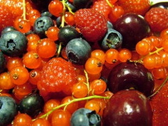 Fruits and berries high in antioxidants