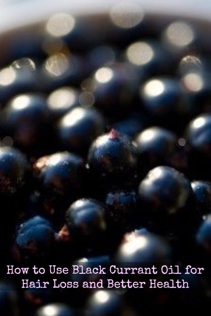 Black currant oil archives superfood profiles for Does fish oil help hair grow