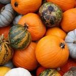 Top 5 Skin Benefits of Pumpkin
