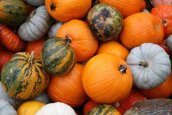 Pumpkin skin benefits