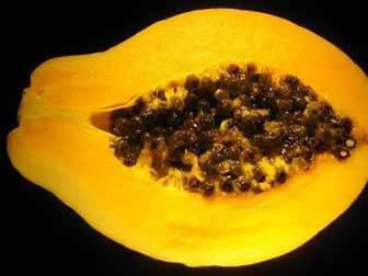 Papaya Seeds Benefits