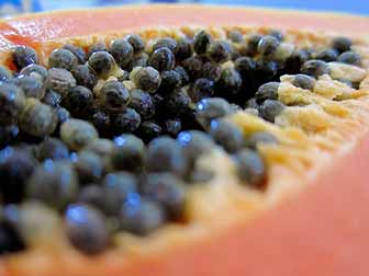 Kill Parasites with Papaya Seeds