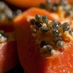 Papaya Seed Digestive