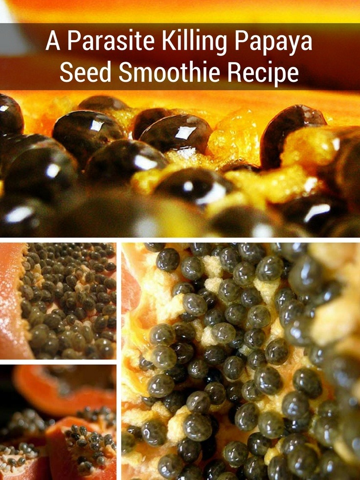 How to Kill Parasites with Papaya Seeds + An Intestinal Cleanse Smoothie