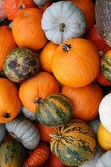Pumpkin-skin-benefits