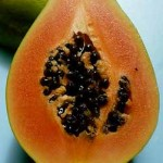 Top 5 Papaya Health Benefits