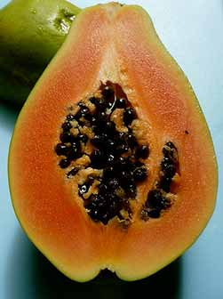 Top 5 Papaya Health Benefits | Superfood Profiles