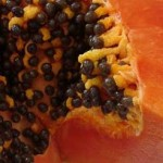 Natural Male Birth Control – Papaya Seeds as a Contraceptive for Men?